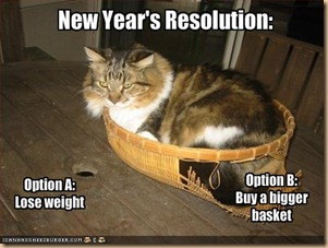funny-new-year-s-resolutions